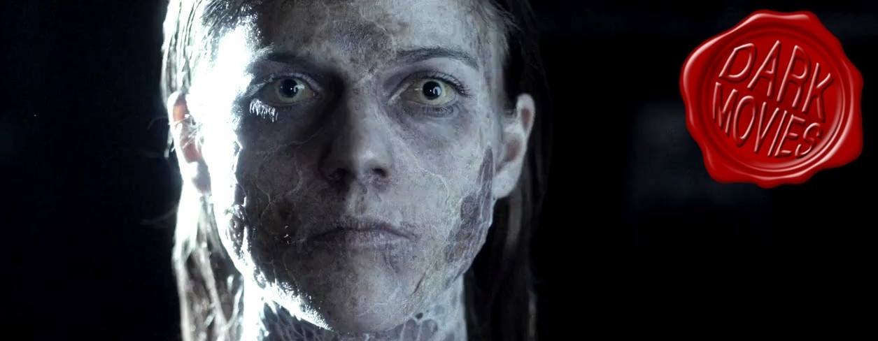 Dark Movies – Roundup 1: Januar/Februar 2015